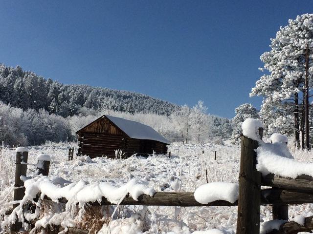 Daddy's barn - December