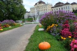 Ludwigsburg Castle - Germany