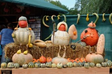 Pumpkinfest Creations - Ludwigsburg Germany